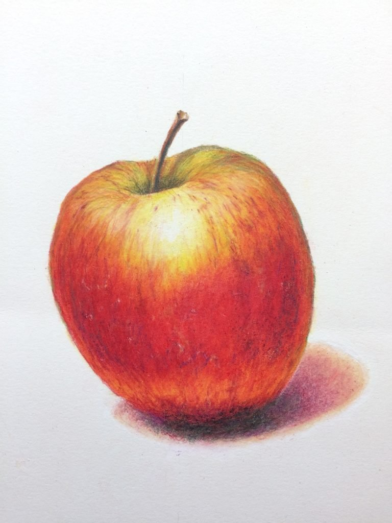 Apple drawing by Mark Mitchell for Cindy's class